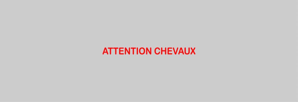 Sticker Voiture Attention Chevaux 100 x 08cm