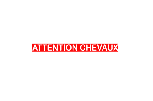Sticker Voiture Attention Chevaux 60 x 05cm avec fond