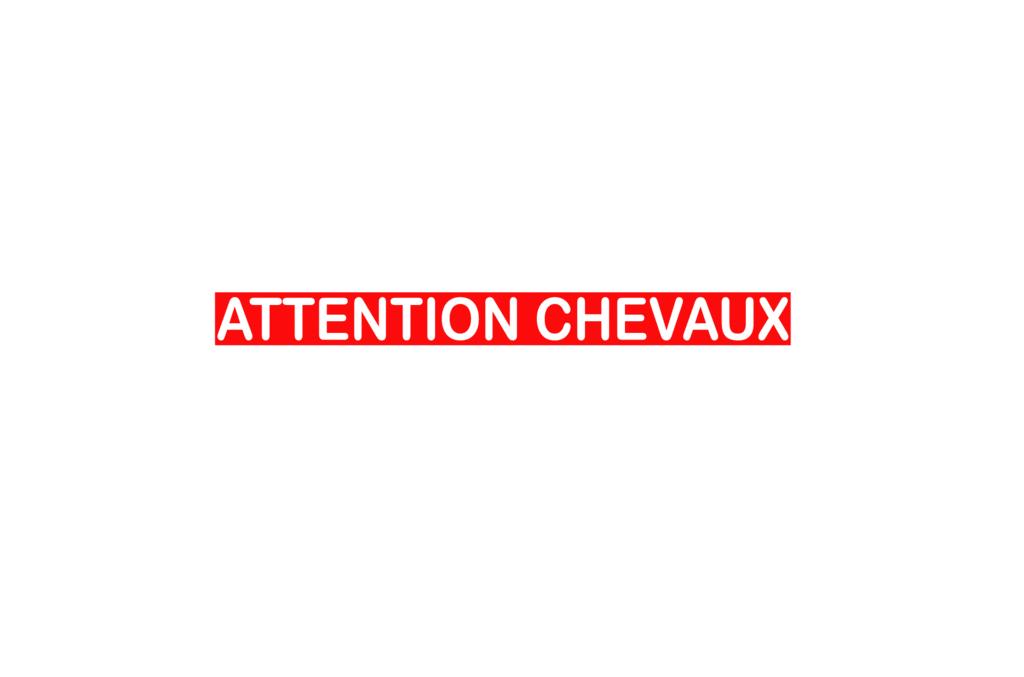 Sticker Voiture Attention Chevaux 60 x 05cm avec fond