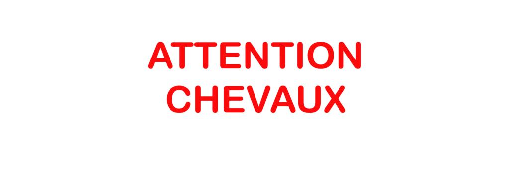 Sticker Voiture Attention Chevaux 30 x 10 cm