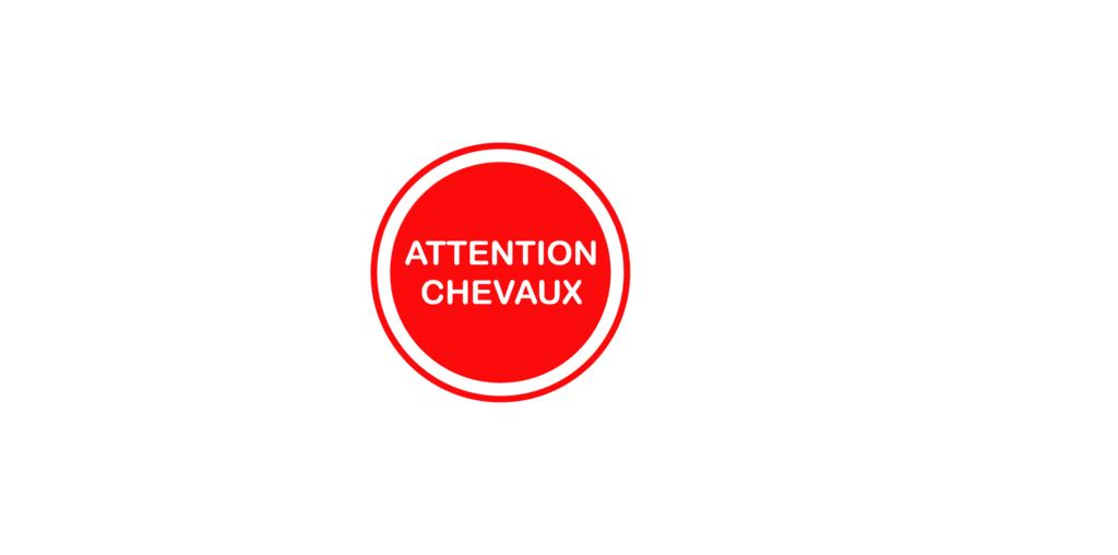 Sticker Voiture Attention Chevaux 23 x 23 cm