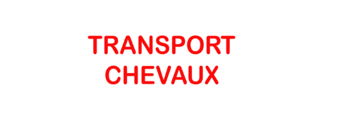 Sticker Voiture Transport Chevaux 30 x 10 cm