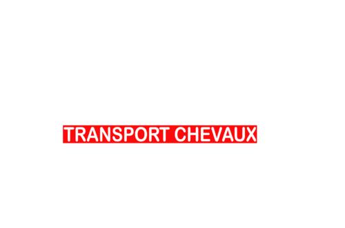Sticker Voiture Transport Chevaux 60 x 05cm avec fond
