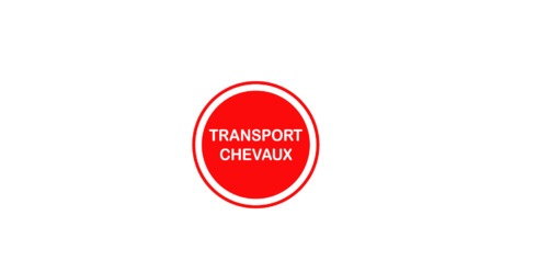 Sticker Voiture Transport Chevaux 23 x 23 cm