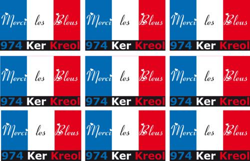 Planche de 9 mini sticker Merci les bleus